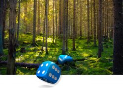 Työnäyte: Metsänhoitoyhdistys - Visuaalinen suunnittelu