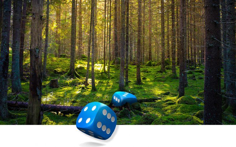 Metsänhoitoyhdistykset